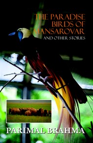 The Paradise Birds Of Mansarovar And Other Stories