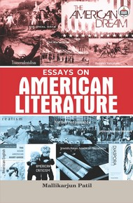 Essays On American Literature