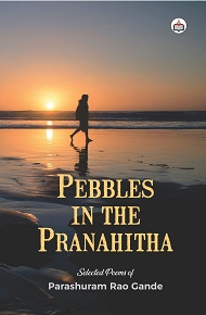 Pebbles In The Pranahitha
