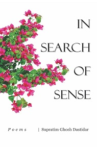 In Search Of Sense